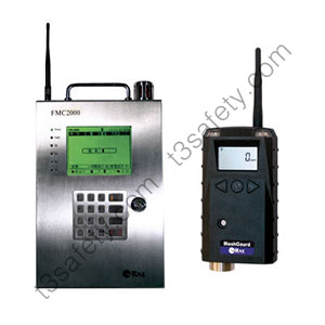Fixed/Wireless Gas Detection